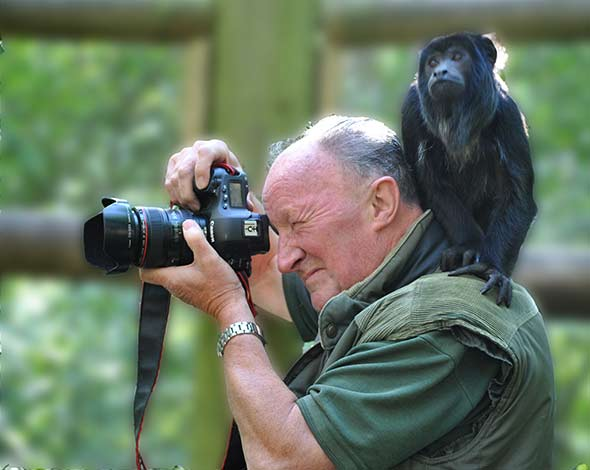 Dave Rolfe Wildlife photographer